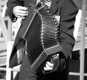 accordian gracz sepiowy Fotografia Royalty Free