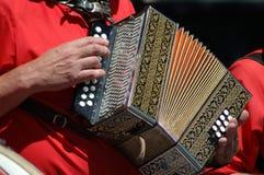 accordian gracza Obraz Royalty Free