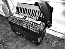 Accordian royalty free stock images
