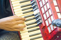 Accordian Player. A close-up picture of man playing an accordian Stock Photo