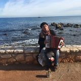 Accordian Player by the Sea royalty free stock image