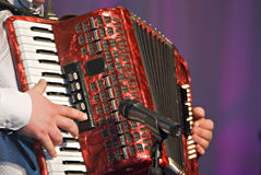 Accordion Royalty Free Stock Images