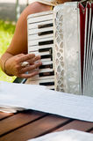 Accordion. Girl Playing the accordion in the garden stock photo
