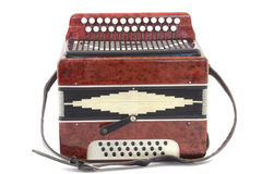 Accordion. Musical instrument. It is isolated on a white background Royalty Free Stock Photo