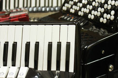 Accordion. Group of the accordion instruments stock images