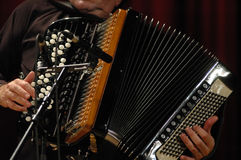 Accordion. Playing accordion during live jazz session in Italy Royalty Free Stock Photography
