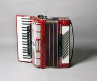 Accordion. On light grey background royalty free stock photos