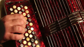 Accordion stock video