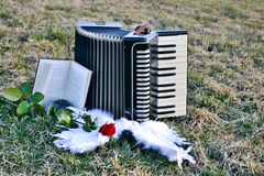 Accordion of Angels Stock Image