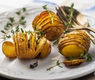 Accordion baked potatoes Stock Photo