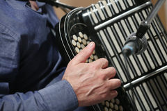 Accordion Bayan Stock Image