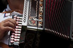 The accordion Stock Photo
