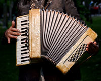 Accordion. Musician playing the accordion detail royalty free stock image
