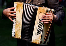 Accordion. Musician playing the accordion detail stock image
