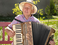 Accordion. Old man enjoying playing accordion in his garden on sunny day royalty free stock photography