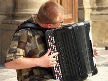 Accordion player. Man playig accordion stock photo