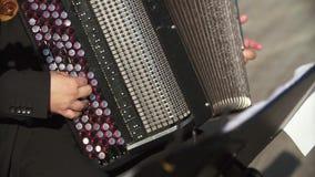 Accordion Player Bayan stock footage