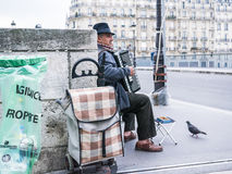 Accordion player on Parisian bridge; pigeon strolls by. Royalty Free Stock Photo