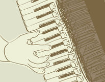 Accordion sketch Royalty Free Stock Photography