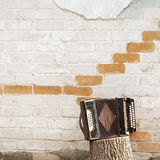 Accordion on the stump Stock Images