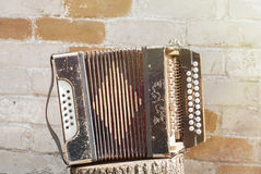 Accordion on the stump Stock Photography