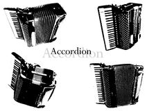 Accordion vector Royalty Free Stock Image