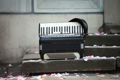 Accordion. Vintage accordion on a wedding day stock image