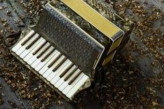 Accordion on wooden floor. Beautiful vintage accordion on wooden floor Stock Photo