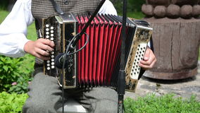 Accordionist folk music stock footage