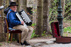 Accordionist in Sinaia Stock Images