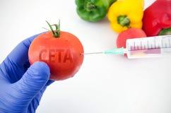 Accordo di libero scambio CETA e frutta e verdure di GMO Immagini Stock