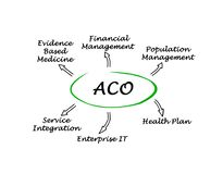 Accountable Care Organizations. Diagram of Accountable Care Organizations vector illustration