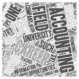 Accounting Careers Promising word cloud concept Stock Image