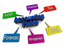 Accounting fields Royalty Free Stock Photos