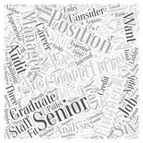 Accounting jobs dlvy nicheblower.com word cloud concept  background Royalty Free Stock Photo