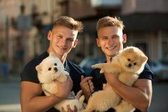 Accouplements grands Jumeaux heureux avec le regard musculaire Les hommes de jumeaux tiennent les chiens de pure race Hommes musc photographie stock libre de droits