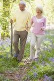 Accouplez la marche à l'extérieur avec le sourire de bâton de marche image stock