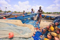 ACCRA, GHANA � MARCH 18: Unidentified Ghanaian fishermen doing t Royalty Free Stock Images