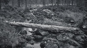 Accroc et rivière brisés Photo stock