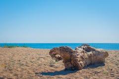 Accroc sur la plage Aube en Ukraine Image stock