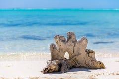 Accroc sur la plage tropicale Images stock