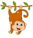 Accrocher mignon de bande dessinée de singe Photos stock