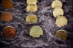 Accroissement d'argent cents billets d'un dollar s'élevant dans l'herbe verte Euro pièces de monnaie s'élevant du sol Foyer sélec Photos stock