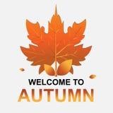 Accueil à l'automne Feuilles d'automne avec le texte sur un fond blanc Photo stock