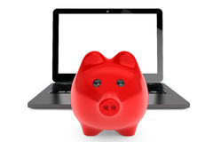 Accumulation of information Concept. Moder Laptop with Piggy Ban. K on a white background Royalty Free Stock Images