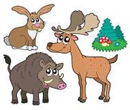 Accumulazione 1 degli animali della foresta Fotografia Stock