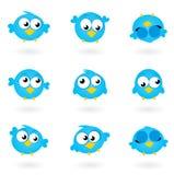 Accumulazione blu sveglia delle icone degli uccelli del Twitter di vettore. Fotografie Stock