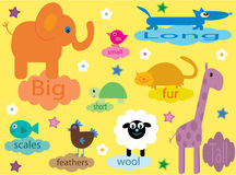 Accumulazione degli animali educativi per i bambini Immagini Stock