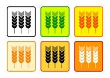 Accumulazione dei cereali Fotografie Stock Libere da Diritti
