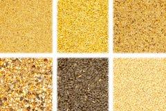 Accumulazione dei cereali su priorità bassa bianca Fotografia Stock Libera da Diritti